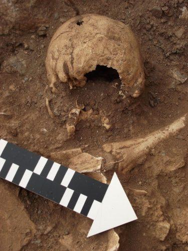 Read more about the article Откриена нова гробна конструкција на локалитетот Градиште – Бучинци